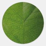 Green Leaf Round Stickers