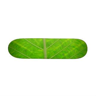 Green Leaf Skate Deck