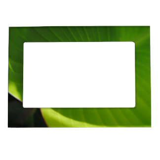 Green Leaf Swirl Magnetic Picture Frame
