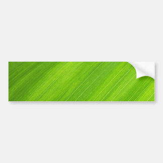 Green leaf texture bumper sticker