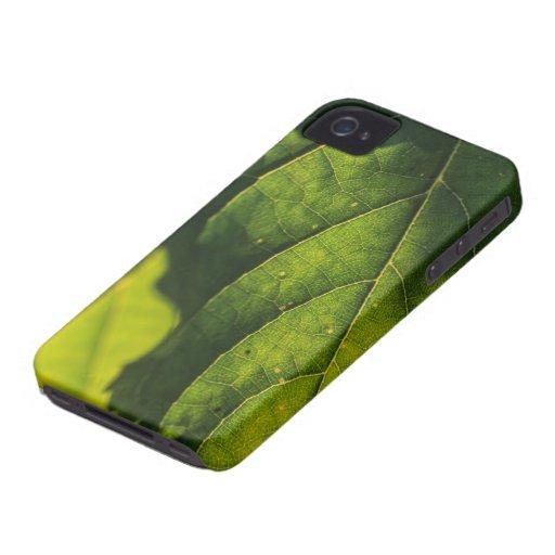 Green Leaf Veins Blackberry Case