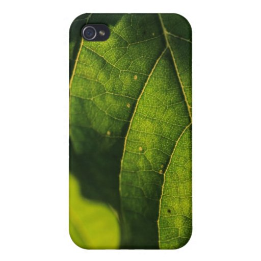 Green Leaf Veins Cases For iPhone 4
