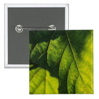 Green Leaf Veins Pin