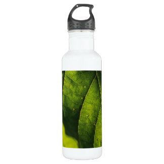 Green Leaf Veins Water Bottle
