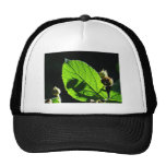 Green leaf with cool shadow trucker hat
