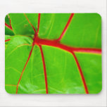 Green Leaf with Red Veins Mouse Mat