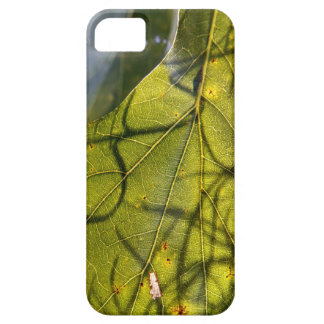 green leaf with Spanish moss tendrils in silhouett iPhone SE/5/5s Case