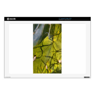 """green leaf with Spanish moss tendrils in silhouett Decal For 17"""" Laptop"""