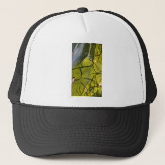 green leaf with Spanish moss tendrils in silhouett Trucker Hat