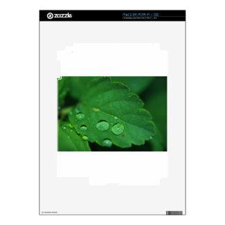 Green Leaf with Waterdrops iPad 2 Skin
