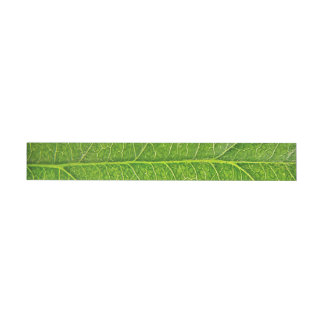 green leaf wraparound address label