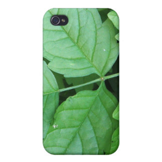 Green Leafs Details iPhone 4 Cover