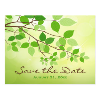 Green Leafy Branches Save the Date Post Card