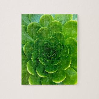 Green Leafy Desert Succulent Jigsaw Puzzle
