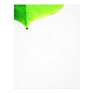 Green Leave Flyer
