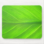 green leave mouse pad