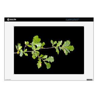 Green leaves against dark background skin for laptop
