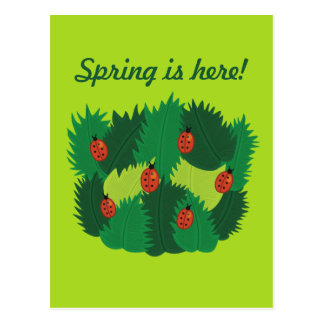 Green Leaves And Ladybugs Spring Is Here Postcard