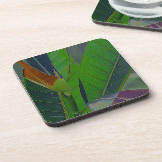 Green Leaves Close-Up Beverage Coaster