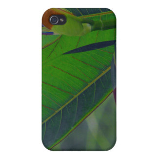 Green Leaves Close-Up iPhone 4 Cases
