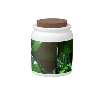 Green Leaves, Foliage and Plant Candy Dish
