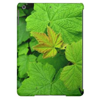 Green Leaves Ipad Air Case