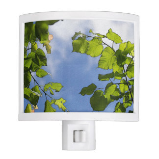 Green Leaves On A Blue Sky Night Lite