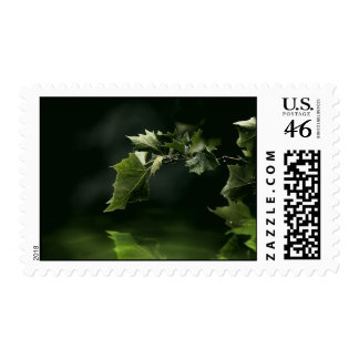 Green leaves over water eco Postage
