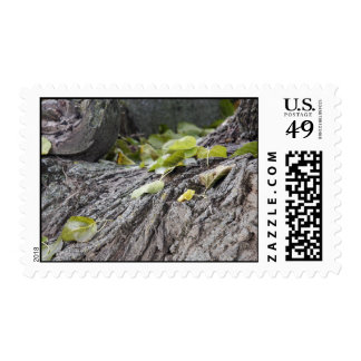Green Leaves Stamps