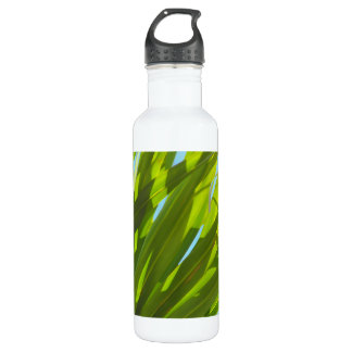 Green Leaves, Sunlight and Blue Sky Water Bottle