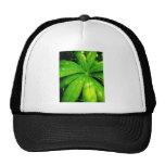 green * leaves trucker hats