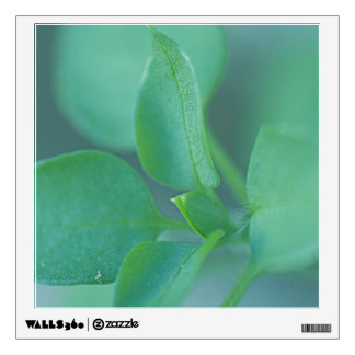 Green Leaves Wall Decal