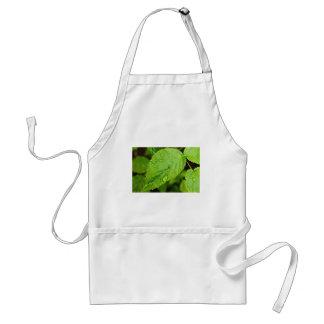 Green leaves with drops Folhas verdes com gotas Gr Apron