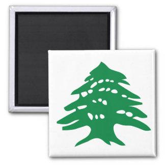 Green Lebanon Cedar Magnet
