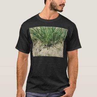 Green leek plants growing in the garden T-Shirt