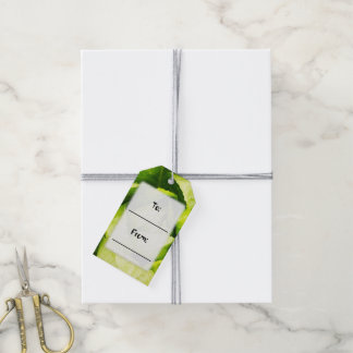 Green Lettuce Leaves With Raindrops Gift Tags