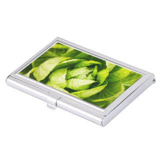 Green Lettuce Leaves With Raindrops Business Card Holder