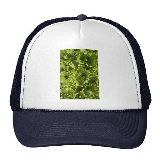 Green lettuce mesh hat