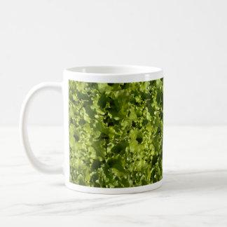 Green lettuce mugs