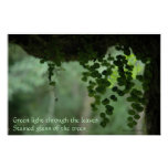 Green light through leaves - Poster with Quote