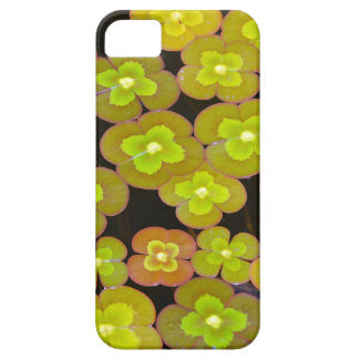 Green lily pad leaf pattern iPhone SE/5/5s case