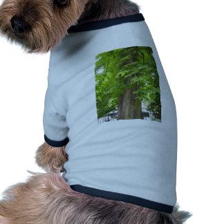 Green living dog clothing