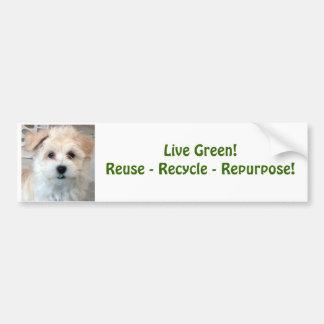 Green Living - Havanese Puppy Car Bumper Sticker