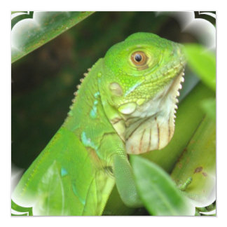 Green Lizard Invitation