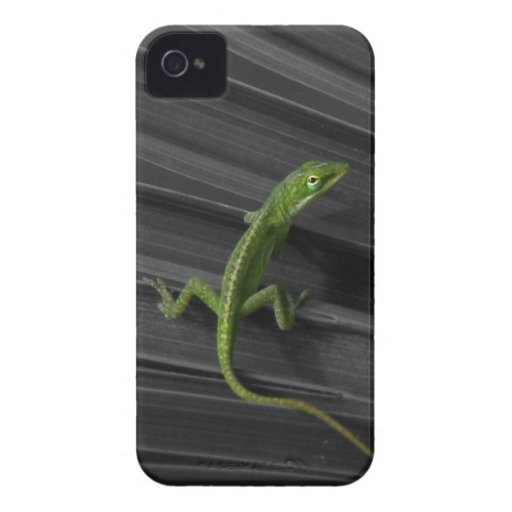 Green Lizard iPhone 4 Barely There Case iPhone 4 Case-Mate Cases