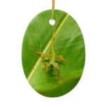 Green Lizard on Green Leaf Ceramic Ornament