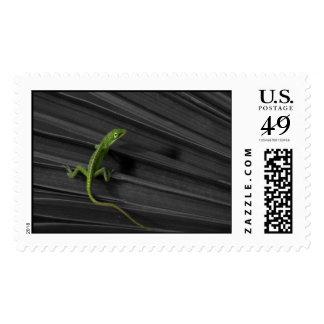 Green Lizard Postage Stamp