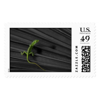 Green Lizard Postage Stamp