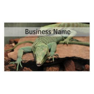 Green Lizards Business Card
