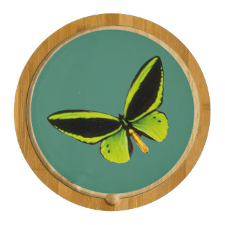 Green longwing butterfly design cheeseboards cheese board